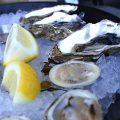【サンフランシスコ】食べ比べができるおすすめオイスターバー #Hog Island Oyster Co(ホグ・アイランド・オイスター)