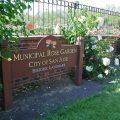 【サンノゼ】89種類の4000本以上のバラが咲き誇る庭園 #Municipal Rose Garden(ミュニシパル・ローズガーデン)