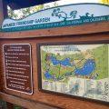 【サンノゼ】朱色の橋、鯉、モミジ…!日本の風情が味わえる憩いの公園 #Japanese Friendship Garden(日本友情庭園)